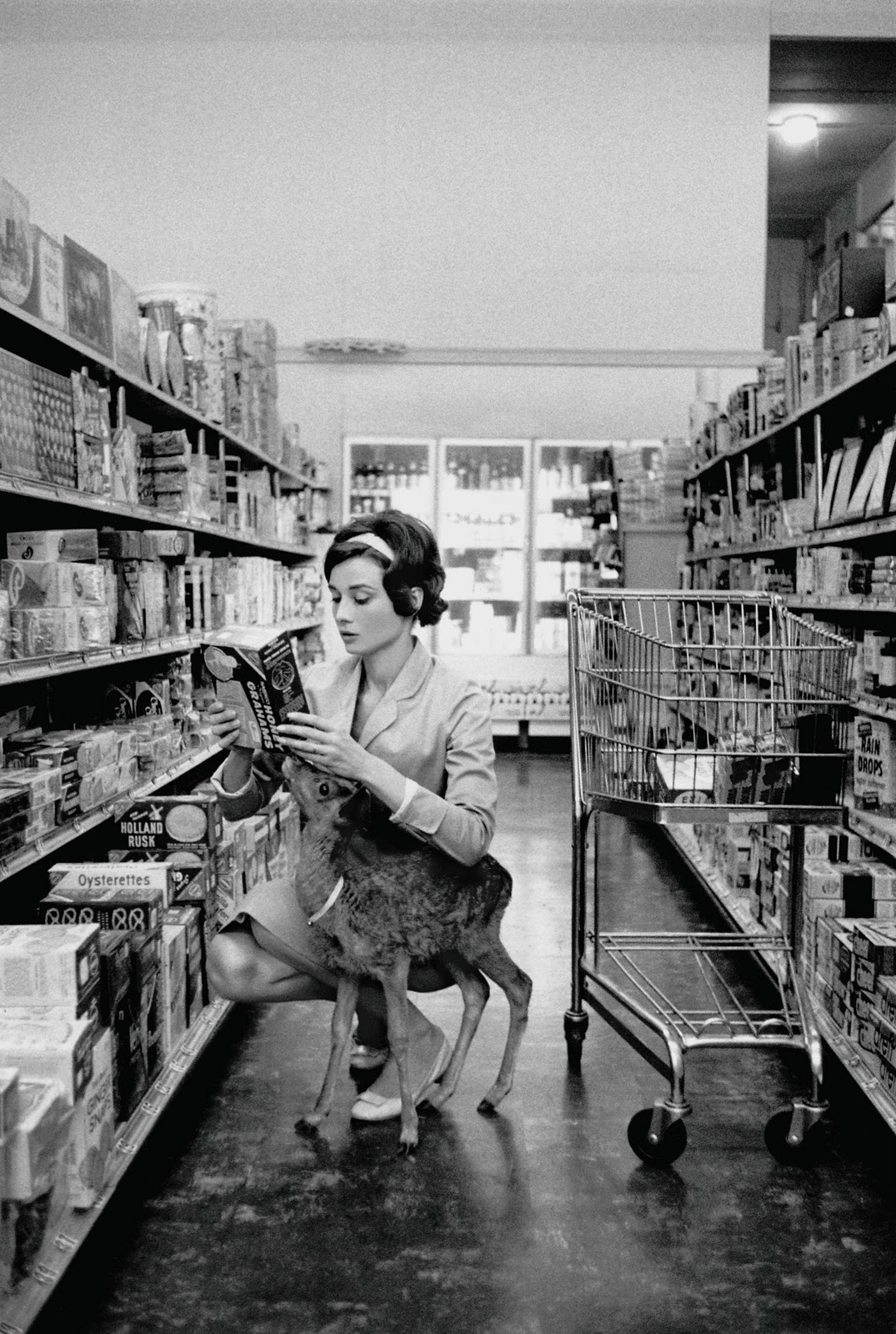 Audrey Hepburn with her pet deer IP 1958