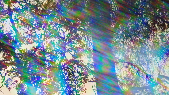 world-prism